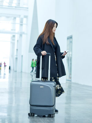 Airwhee1 SR5 luggage